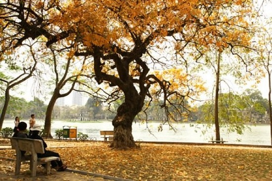 Hanoi's most beautiful places in the fall
